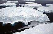 Eroded Iceberg. Dumont d Urville. Antarctica