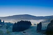 Morning mist over Jostal valley, Black Forest, Baden-Wurttemberg, Germany