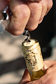 Uncorking of a bottle, Winery Herrenberg, Schoden, Saar, Mosel-Saar-Ruwer, Rhineland-Palatinate, Germany