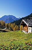 traditional alpine hut with Watzmann, Berchtesgaden range, Berchtesgaden, Upper Bavaria, Bavaria, Germany