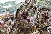 Men wearing headdress at Singsing Dance, Lae, Papue New Guinea, Oceania