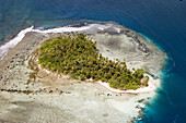 Aerial view of a deserted island with palm trees, Pohnpei, Micronesia, Oceania