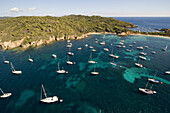 Aerial view of boats in the bay and the beach La Courtade, Porquerolles, Iles d'Hyeres, France, Europe