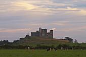 Außenaufnahme, Sommer, Rock of Cashel, Cashel, County Tipperary, Irland, Europa