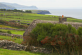 outdoor photo, house with stone roof at the Irish Famine Visitor Centre, Dingle Peninsula,  County Kerry, Ireland, Europe