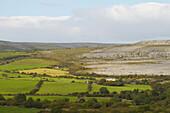 outdoor photo, summer, The Burren near Ballyvaughan,  County Clare, Ireland, Europe