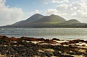 Außenaufnahme, Blick von Old Head (bei Louisburgh) zum Croagh Patrick , County Mayo, Irland, Europa