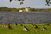 outdoor photo, view from Lough Key Forest Park on Lough Key and Island with ruin , County Roscommon, Ireland, Europe
