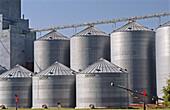 Grain silos. Southwestern Minnesota. USA.