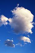 Atmosphäre, Außen, Blau, Farbe, Froschperspektive, Himmel, Hintergrund, Hintergründe, Landschaft, Landschaften, Luft, Natur, Tageszeit, Textur, Texturen, Weich, Weiß, Wolke, Wolken, J53-437979, agefotostock