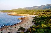 Sierra de Irta Natural Park. Alcossebre. Castellon province. Comunidad Valenciana. Spain