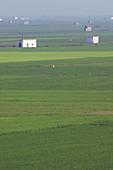 Rice fields seen from Montanyeta dels Sants, Sueca. Valencia province, Comunidad Valenciana, Spain