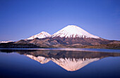 Parinacota and Pomerape Volcanoes. Lauca National Park. Chile