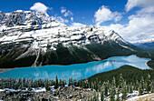 Peyto Lake and Rocky Mountains, Banff Narional Park. Alberta, Canada