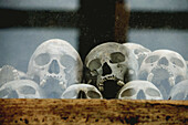 Skulls of the Khmer Rouge s victims exposed in stupa at the Killing Fields Memorial of Choeung Ek, near Phnom Pehn. Cambodia