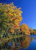Autumn colors. New England. USA