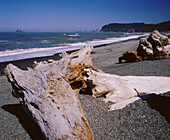 Drift logs along Rialto Beach in Olympic Seashore. Olympic National Park. Washington