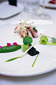 Seafood dish in Restaurant Falai, Manhattan, New York, USA, Amerika