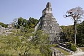 Ball court and Temple I, Great Jaguar. 700 d.c. Mayan ruins of Tikal. Peten region, Guatemala