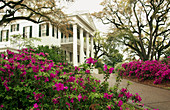 Stanton Hall antebellum home in Natchez, Louisianna, USA