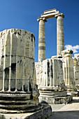 The Temple of Apollo ruins at the Didyma site in westernTurkey.
