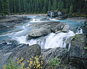 Natural bridge at Kicking Horse River, Yoho National Park. British Columbia, Canada