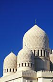 Detail of mosque. Alexandria. Egypt