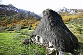 Teito (typical dwelling). Somiedo Natural Park. Asturias. Spain