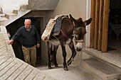 Donkey carrying a load with older man, Pack animal, Agros, Pitsilia region, Troodos mountains, South Cyprus, Cyprus