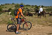 Cycle tour, mountain bike tour with Thomas Wegmueller, Anogyra, Limassol area, South Cyprus, Cyprus