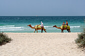 Tourists riding a camel along the beach, Dubai, United Arab Emirates, UAE