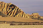 Barren landscape. Bardena Blanca. Bardenas Reales. Navarre. Spain