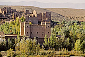 Kasbah. Draa Valley. Province of Ouarzazate. Morocco. Africa.