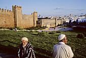 Kasbah of Oudaia. Rabat city. Morocco. Africa.