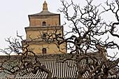 Great wild goose pagoda or Dayanta. Xi ian city. Shanxi province. China.
