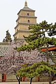 Great wild goose pagoda or Dayanta. Xi ian city. Shaanxi province. China.