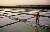 Collecting salt in the salterns. Marsh of Le Fier d Ars. Island of Ré. Charente Maritime region. France.