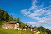 Alpine pasture with alpine hut, Niedere Zwieselalm, Gosau, Upper Austria, Austria