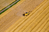 Aerial shot of combine harvester on grain field, Lower Saxony, Germany