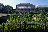 Jardin des Plantes, Mexican hothouse, botanical garden,  5e Arrondissement, Paris, France