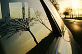 Aussen, Außen, Auto, Autos, Baum, Bäume, Detail, Details, Fahrzeug, Fahrzeuge, Farbe, Fenster, Horizontal, Land, Landstraße, Landstraßen, Natur, Reflektion, Reflektionen, Reise, Reisen, Silhouette, Silhouetten, Sonnenuntergang, Sonnenuntergänge, Spiegelbi