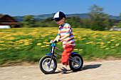 boy riding bicycle / Like a  Bike, in spring, Gossau ZH, Zuerich, Switzerland