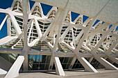 Museum of Science Príncipe Felipe, City of Arts and Sciences by S. Calatrava. Valencia. Comunidad Valenciana, Spain