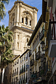 Cathedral tower from Romanilla Square. Granada. Andalusia. Spain