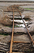 Rails for lorries, protected against sinking in mud flates with branches