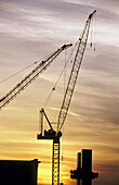 Construction cranes. New York City, USA