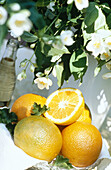 Aliment, Aliments, Citrus fruits, Close up, Close-up, Closeup, Color, Colour, Concept, Concepts, Daytime, Entertaining, Exterior, Food, Foodstuff, Fresh, Fruit, Fruit tree, Fruit trees, Fruits, Half, Halves, Healthy, Healthy food, Nourishment, Orange, Ora