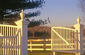 Abend, Außen, Eingang, Eingänge, Farbe, Hindernis, Hindernisse, Horizontal, Konzept, Konzepte, Land, Ländlich, Niemand, Offen, Sonnenlicht, Sonnenuntergang, Sonnenuntergänge, Sonnig, Stand, Tageszeit, Tür, Türen, Weiß, Zaun, Zäune, L84-312685, agefotostoc