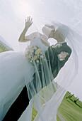 t, Backlight, Bond, Bonding, Bonds, Bridal bouquet, Bridal bouquets, Bridal couple, Bride, Bridegroom