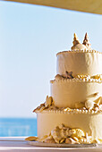 Celebrate, Celebrating, Celebration, Celebrations, Close up, Close-up, Closeup, Color, Colour, Concept, Concepts, Daytime, Detail, Details, Exterior, Horizontal, Outdoor, Outdoors, Outside, Ready, Romantic, Seashell cake, Still life, Sweet, Table, Tables,